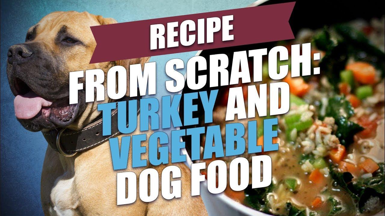 Turkey and vegetable dog food recipe simple and healthy youtube turkey and vegetable dog food recipe simple and healthy forumfinder Images