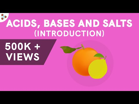 Acids Bases and Salts - Introduction - CBSE 7