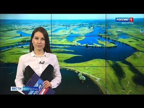 Вести-Волгоград. Выпуск 21.01.20 (20:45)