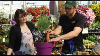go! Southern Alberta: Spring Gardening with Golden Acre Garden Sentre