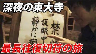 (7)大阪 奈良の旅 奈良公園を深夜に歩く NEW最長往復切符の旅 総集編《山科駅→奈良駅》