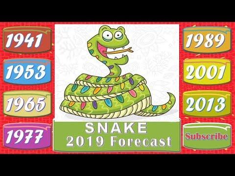 Snake Horoscope 2019 | Born 1941, 1953, 1965, 1977, 1989, 2001, 2013