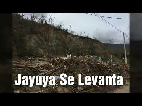 Jayuya Después De Maria