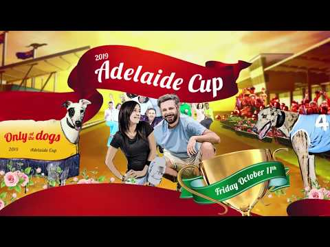 2019 Adelaide Cup