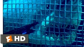 Deep Blue Sea (1999) - Smart Sharks Scene (2/10) | Movieclips