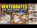 ANIMAL CLASSIFICATION: VERTEBRATE SORTING VIDEO
