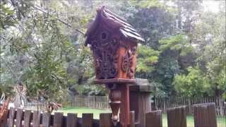 Crazy Bird House