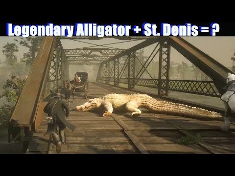 RDR2 Lure Legendary Alligator to Saint Denis - Red Dead Rede