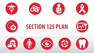 How Does a Section 125 Plan Work?