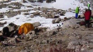 My Own Two Feet by Leeward Cinema - Snowboarding