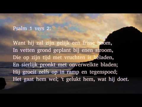 Psalm 1 vers 1, 2 en 4 - Welzalig hij, die in ...