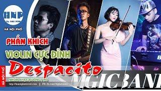Ngẫu Hứng Despacito Violin Cả Phố Đi Bộ Phấn Khích