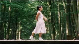 Steve Reich - Violin Fase - Violin Phase (HQ)