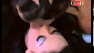 مقطع ساخن من فيلم عربي ممنوع من العرض