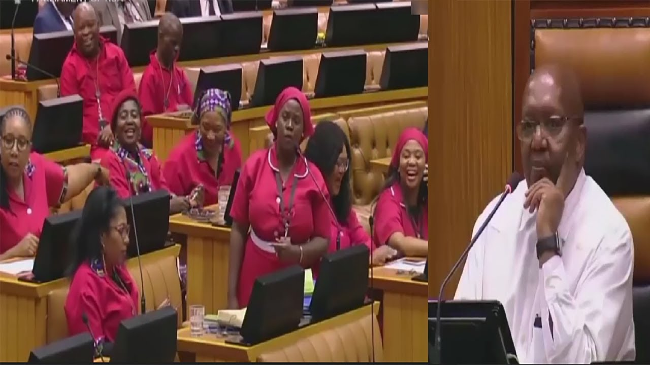 Deputy Speaker In South African Parliment Calls The EFF Anarch-sts