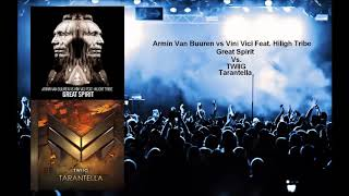 TWIIG Tarantella vs AVB vs Vini Vici Ft  Hilight Tribe Great Spirit Quentin M Mashup