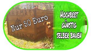 🌻 Hochbeet für nur 50 Euro selber bauen 🌻 // Garten // DIY // Gartenideen //Günstig