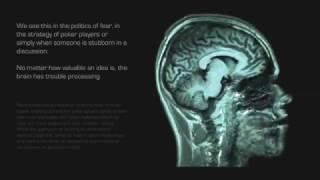 Бог в нейронах Джо Диспенза