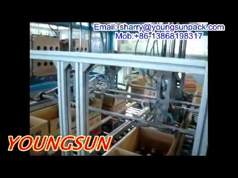 Top hole partition inserter for bottles  YOUNGSUN