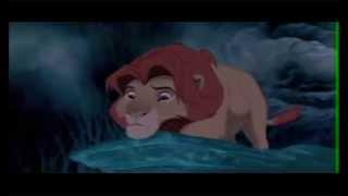 Daft Lions Video