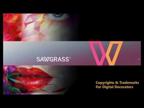 Condé & Sawgrass Presents:  Copyrights & Trademarks Webinar (8/13/19)