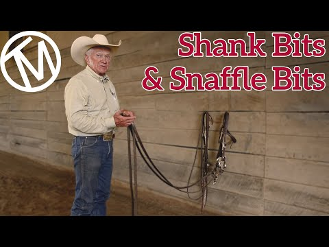 Comparing the Shank and Snaffle Bits - Terry Myers