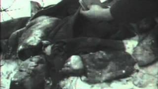 Stalingrad 08 - The Sixth Army Encircled