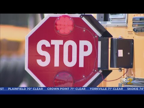Mick Lee - Naperville Combating Drivers Ignoring School Bus Signals With New Strategy