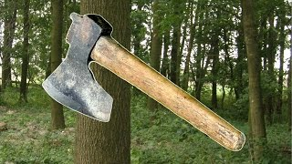 Wycinka drzewa na łuk