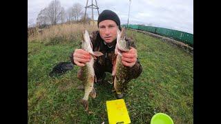Щука в ноябре На Рыбалку для души