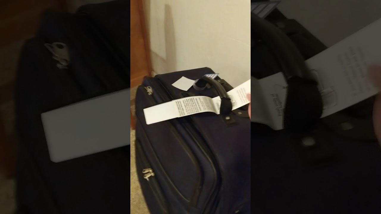 Disney luggage tag