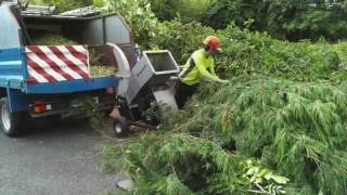 Jansen GTS-1500E Small wood chipper. In action :)