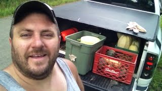 Diy Organic Raised Plant Bed Vegetable Garden Update. Organic Garden And Green Space Goodness