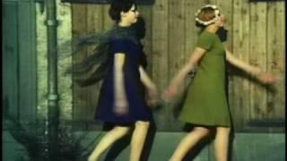 Daisies clip 3