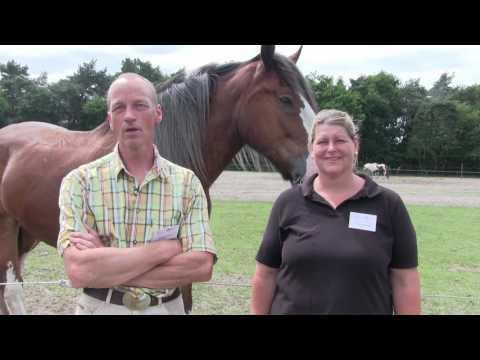 WWW.LOHA.: Helvoirt 2017 06 13 loeren bij de boeren
