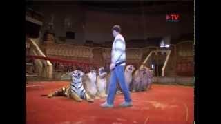 Дрессировщик тигров