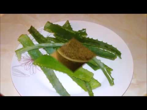 Алоэ - рецепты лечения соком и листьями