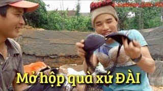 DTVN - Món quà từ xứ Đài về Việt Nam có gì đặc biệt
