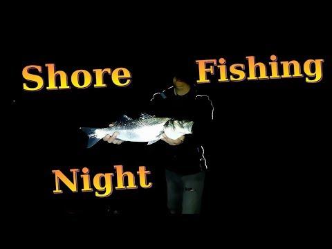 Shore Fishing Night - Bass, Bream, Dogfish, Conger