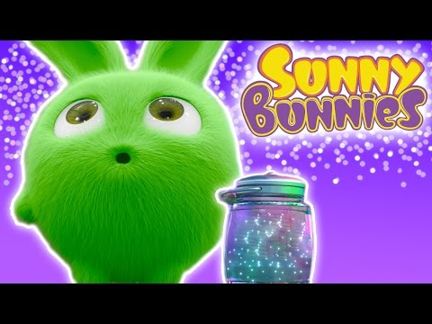 Cartoons  Sunny Bunnies - FIREFLIES - 1 Hour Special  Cartoons for Babies