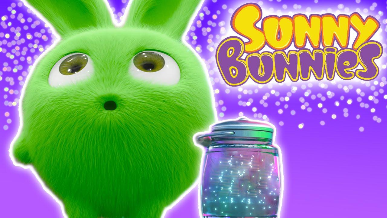 Cartoons ★ Sunny Bunnies – FIREFLIES – 1 Hour Special ★ Cartoons for Babies