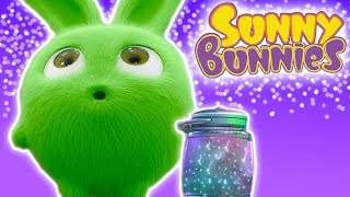 Cartoons ★ Sunny Bunnies - FIREFLIES - 1 Hour Special ★ Cartoons for Babies