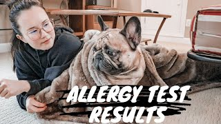 RESULTS for Allergy Test My Pet