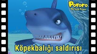 Köpekbalığı şaldırışı   Kısa film animasyon   Pororo türkçe   Pororo turkish