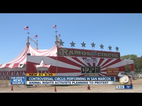 Controversial circus performing in San Marcos