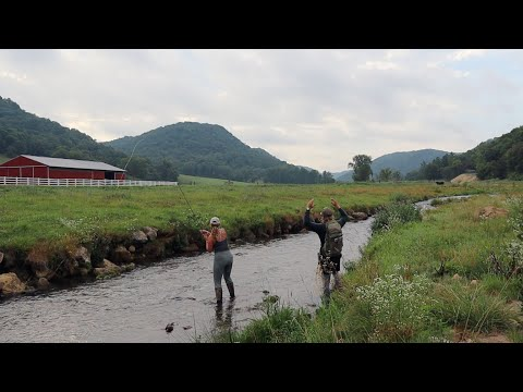 WISCONSIN DRIFTLESS REGION: COULEE DOUBLE TROUBLE (Fly Fishing Wisconsin: Spring & Timber Coulee)