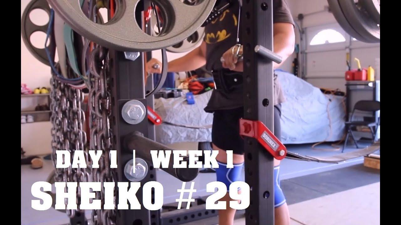 SHEIKO 29 | The Beginning