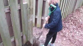How To: Install A Gate In An Existing Fence. Diy