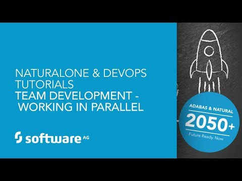NaturalONE & DevOps Tutorials -Team Development - Working in Parallel