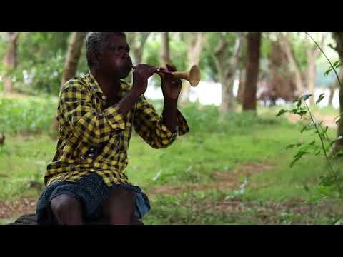 Nanjappan - An Irula musician from Pillur